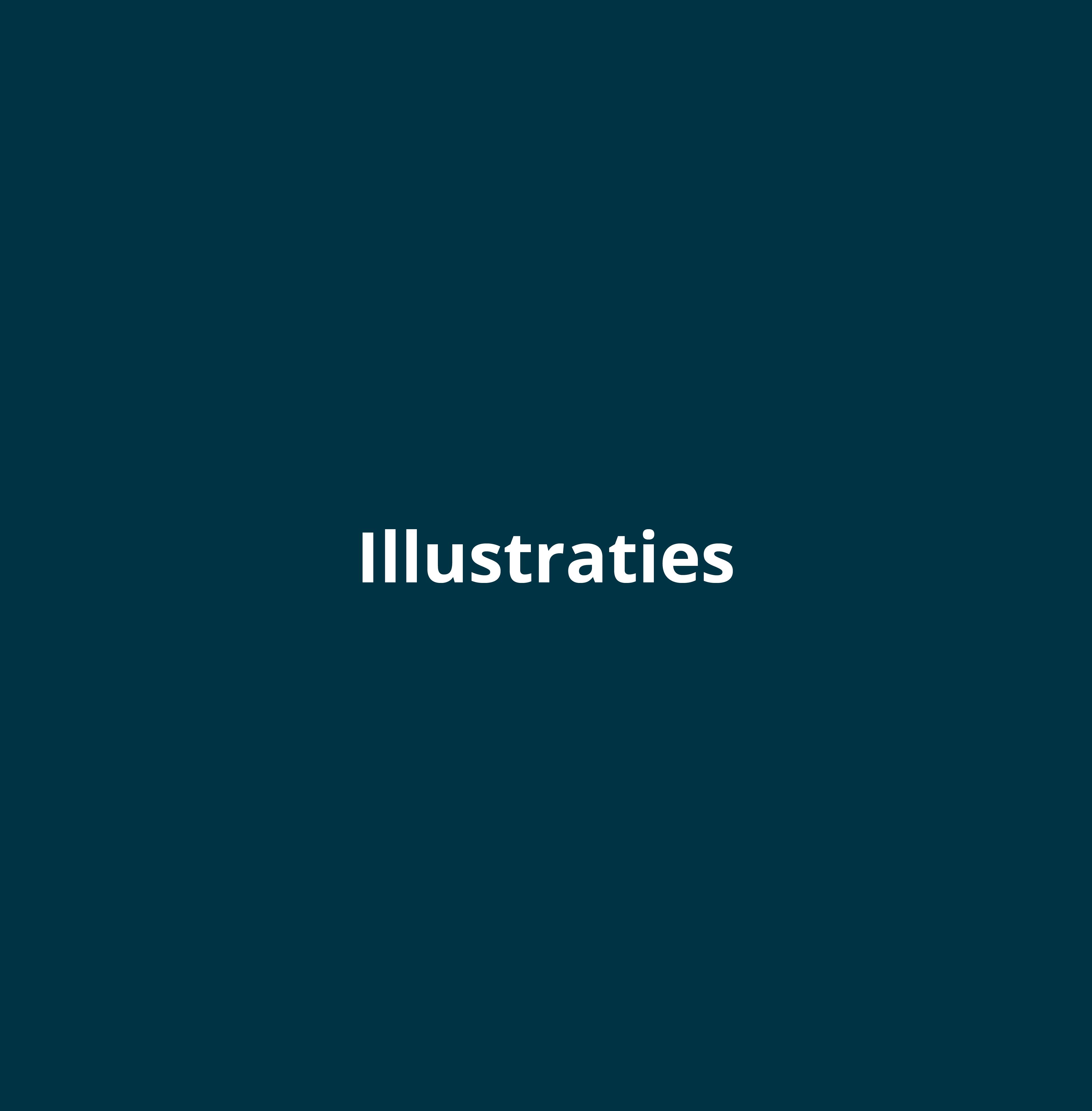Ontwerp laten maken voor illustraties